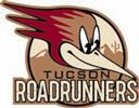 Roadrunner-1-4C
