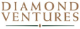 diamond-ventures-WEB